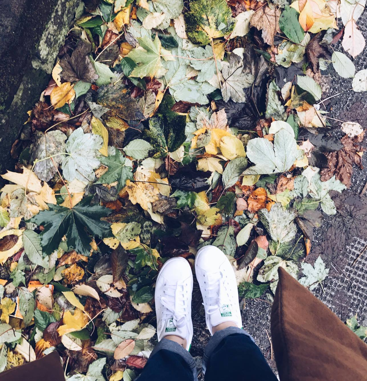 6 Instagram Accounts You Need To Follow For Slowness